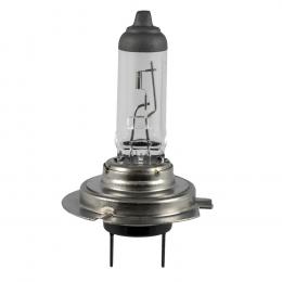 H7 OBN-LAMPE 55W